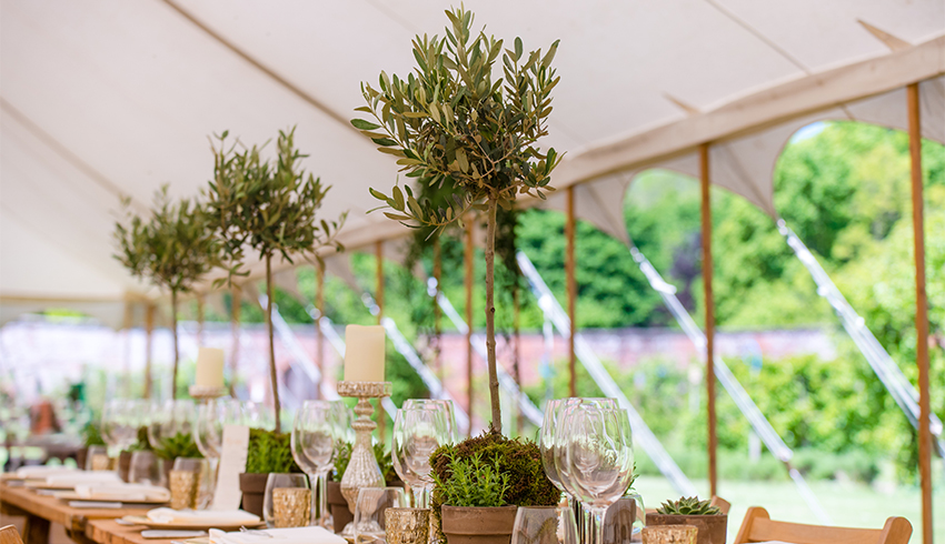 A beautiful wedding reception arrangement in a marquee at the Highden Estate
